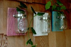 So cute!   PICK YOUR COLORS Three Mason jars mounted by PineknobsAndCrickets, $36.00