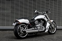 Harley Davidson V-Rod Muscle white,.. the sport bike I am buying after I have my house.