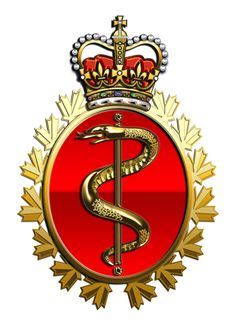 Military Insignia : Canadian Department of National Defence in action: operation POD Canadian Soldiers, Canadian Army, Canadian History, Military Units, Military Art, Military History, Royal Canadian Navy, Afghanistan War, Military Insignia