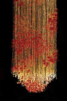 Sharon Marston - Autumn Light
