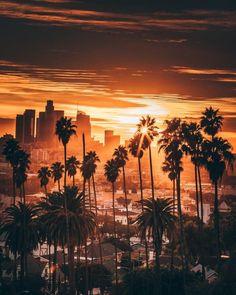 Le photographe John Logic nous balance de la vitamine D dans avec cette série qui nous vient de Californie.