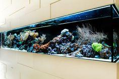 Was ist beim Aquarienbau zu beachten? Teil 1