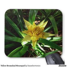 Yellow Bromeliad Mousepad
