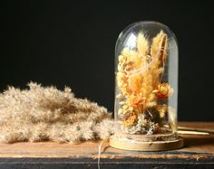 Vintage+glass+display+dome+dried+flowers+Autumn+by+cristinasroom,+$24.00
