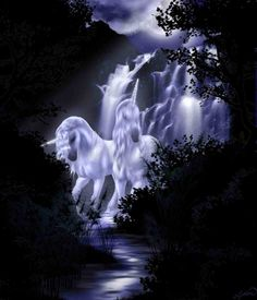 Unicorns fantasy art.