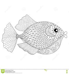 Hand Drawn Zentangle Fish For Adult Anti Stress Coloring Pages, Stock Vector - Image: 71675566