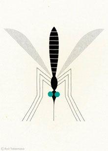 Mosquito. Ryo Takemasa.