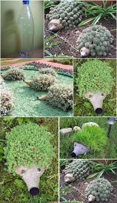 DIY Hedgehogs For Your Garden-used plastic bottle, gray tights/jute, plants, etc. LOVE #GardenCrafts
