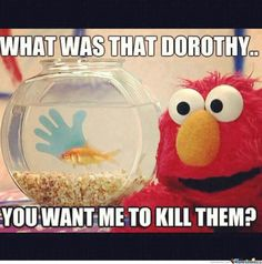 7 Best Sesame Street Quotes Images In 2013 Cookie Monster Quotes