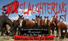 PETITION to U.S. Congress to Ban All Export of Horses to Be Slaughtered for Human Consumption.