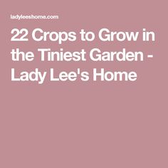 22 Crops to Grow in the Tiniest Garden - Lady Lee's Home