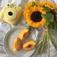 soulmate24.com Photo #yellow #polaroid #sunflowers #flowers #fruit