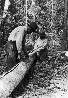Splitting Bark Off a Tree Trunk | Photograph | Wisconsin Historical Society