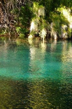 Laguna Arcoiris - Parque Nacional Conguillio - Curacautín, Chile
