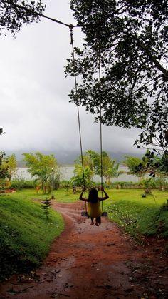 The pretty Wayanad by Vachana Shetty | Tripoto