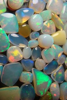 Pick an Opal, any opal!
