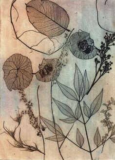 dry point etching printmaking Dry point etching by ~JetJames on deviantART Art And Illustration, Botanical Illustration, Botanical Art, Drypoint Etching, Flower Art, Graphic Art, Art Drawings, Art Projects, Art Prints