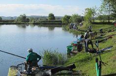 Promozionale a squadre di Torino - 1° Prova - Fishingmania.it