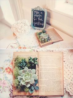 Succulents in a book and I like the photo idea. The frame can be made with black board paint. Simple <3