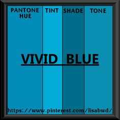 PANTONE SEASONAL COLOR SWATCH VIVID BLUE