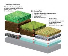 Living roof options and layers of substrate required. via SuperHomes @Steve Benson Turley