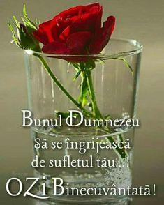 Shot Glass, Glass Vase, Drag, God Loves Me, Beautiful Roses, Good Morning, Religion, My Love, Croissant