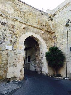 #lions #gate #cagliari #castle