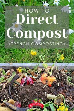 Find out how to put your kitchen scraps dead leaves and other compostables to work without a big pile or bin! Direct composting also known as trench composting is simple and easy! All of the benefits of composting with a bin or pile in your backyard. Garden Compost, Veg Garden, Garden Soil, Fruit Garden, Easy Garden, Raised Garden Beds, Raised Beds, Vegetable Gardening, Garden Ideas