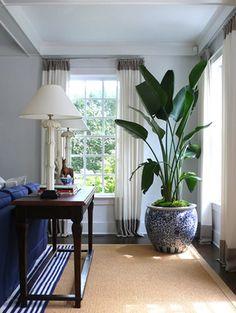 Ideal para decorar esquinas en diferentes ambientes.