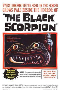 The Black Scorpion (1957)  Mara Corday (Teresa Alvarez), Richard Denning (Hank Scott), Carlos Rivas (Artur Ramos), Mario Navarro (Juanito), Pascual García Peña (José de la Cruz)