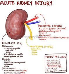 Acute Kidney Injury-as in hockey injury!