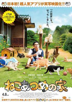 Nuevo póster promocional para la película live-action de 'Neko Atsume no Ie'.