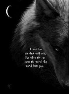 Image may contain: text that says 'Do not fear the dark wolf cub, For when the sun leaves the world the world fears you. Dark Quotes, Wisdom Quotes, True Quotes, Words Quotes, Sayings, Wolf Pack Quotes, Lone Wolf Quotes, Wolf Qoutes, Werewolf Quotes