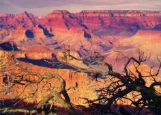 Colorful panoramic photograph of the Grand Canyon in the late afternoon with the warmth of the winter sun casting shadows from above. The massive canyon was carved over several million years by the Colorado River.