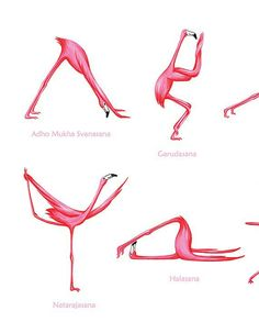 Pink Flamingo yoga pose poster with 25 asanas, 18 x 24 poster Pink Flamingo yoga pose poster with 25 asanas 18 x 24 poster Flamingo Logo, Flamingo Art, Pink Flamingos, Sanskrit, Yoga Poses Names, Funny Poses, Animal Yoga, Yoga Tattoos, Learn Yoga