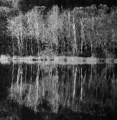 Katsutoshi Yuasa Listen, Nature is Full of Songs and Truth..., 2012 - Google Search
