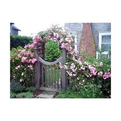 Garden Gate With Roses ❤ liked on Polyvore featuring house, pictures, door and places