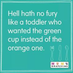 Hahaha soooo true!! Hell hath no fury like a toddler who wanted the green cup instead of the orange one.