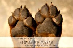 "Home made natural paw wax! (At the bottom of the intro there is a link in big grey letters that says ""How to Make Your Own All-Natural Protective Paw Wax for Dogs & Cats"". Diy Cosmetic, Gato Animal, Tips & Tricks, Animal Projects, Diy Projects, Dog Paws, Kitty Paws, Puppy Paw, Homemade Dog"