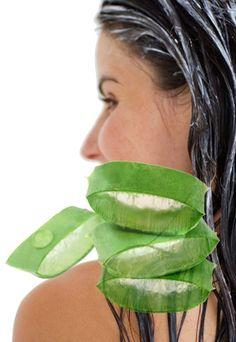 Haarkur mit Aloe Vera - Haarkur selber machen: 5 Rezepte - gofeminin