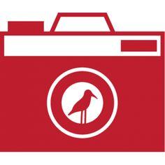 Camera met vogel | The FlockShop