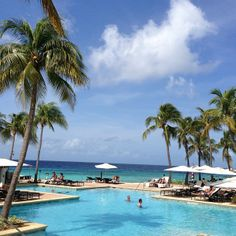 At the pool at the Curacao Marriott Beach Resort.