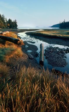 Orcas Island, Washington Deemed the gem of the San Juan Islands, Orcas Island is known for its miles of wilderness, winding coastal roads and endless outdoor activities.