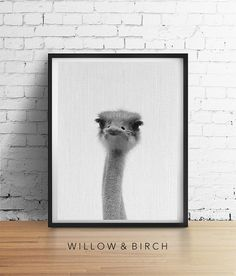 OSTRICH Printable Ostrich Print Poster by WillowandBirchPrints