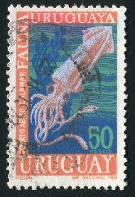 URUGUAY - CIRCA 1968: stamp printed by Uruguay