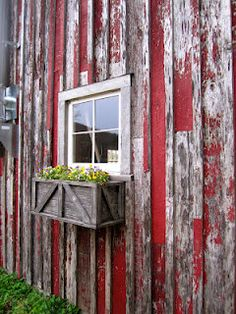 Love this old barn with window boxes.