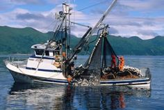 work on a fishing boat up in Alaska.