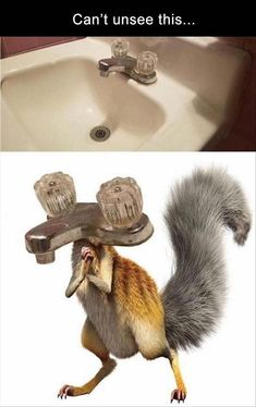 Funny Animal Pictures Of Today's Source by More from my Funny Pictures Of Animals Doing Funny Things With Captions – Page 2 of 3 – JustViral.NetGenius and Stupid Memes Wtf Funny, Really Funny Memes, Crazy Funny Memes, Stupid Memes, Funny Relatable Memes, Funny Jokes, Funny Stuff, Memes Humor, Funny Pics