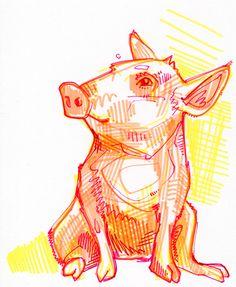 drawing of a pig / dessin d'un cochon