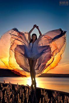 beautiful color photo, sun, water